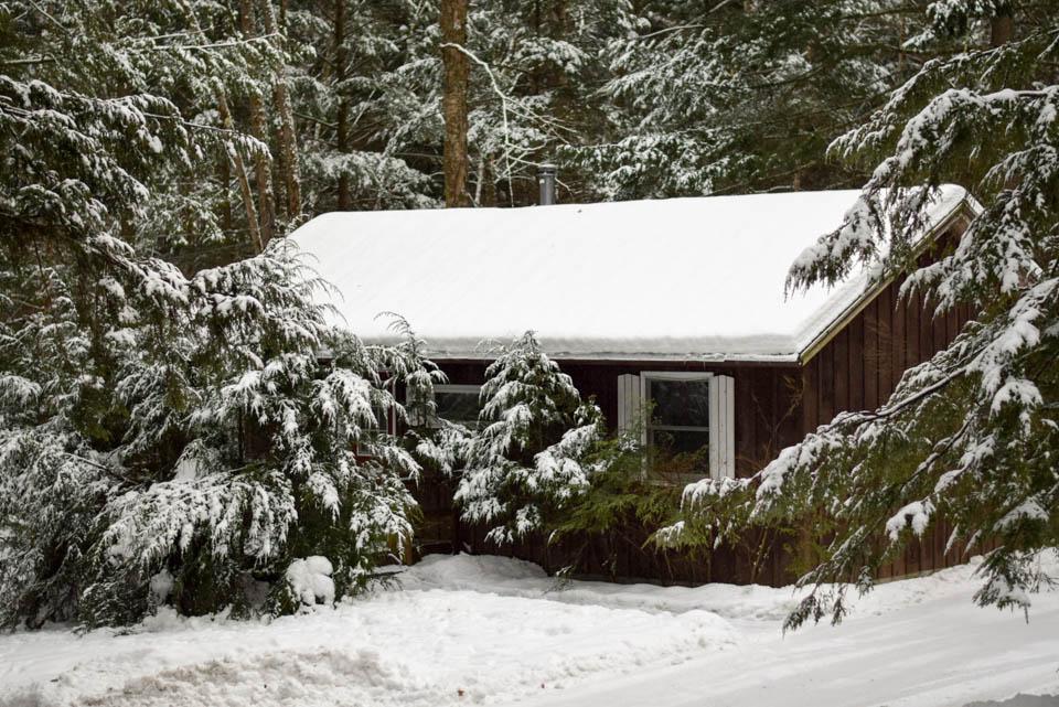 Spruce Cabin Vermont Winter